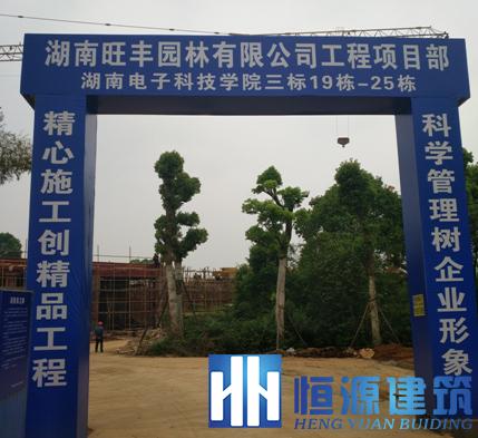 湖南电子科技职业学院防水工程